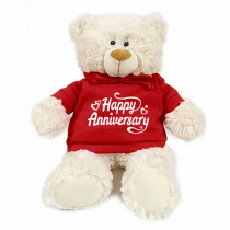 Teddy bear with trendy red hoodie - Happy Anniversary