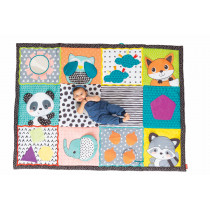 FOLD & GO GIANT DISCOVERY MAT