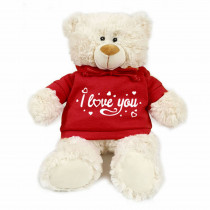 Teddy bear with trendy red hoodie - I love you